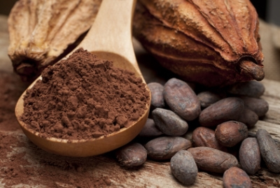 Indonesia Cocoa Industry | GBG