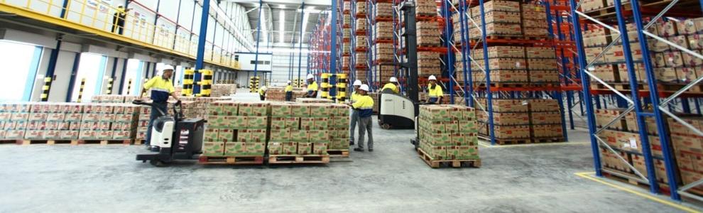 kamadjaja logistics human ressources and values